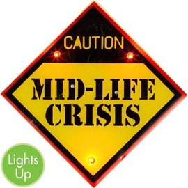 Flashing Button  - Mid Life