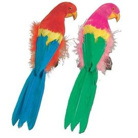 Assorted Feathered Parrot-1pkg-12""