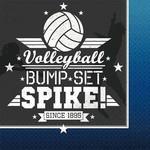 Napkins - LN - Volleyball - 16pc