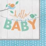 Luncheon Napkins-Hello Baby Boy-16pk-2ply
