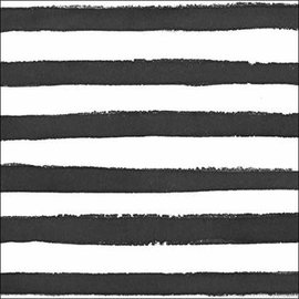 Beverage Napkins- Dotted & Stripped- 24pk- 3ply