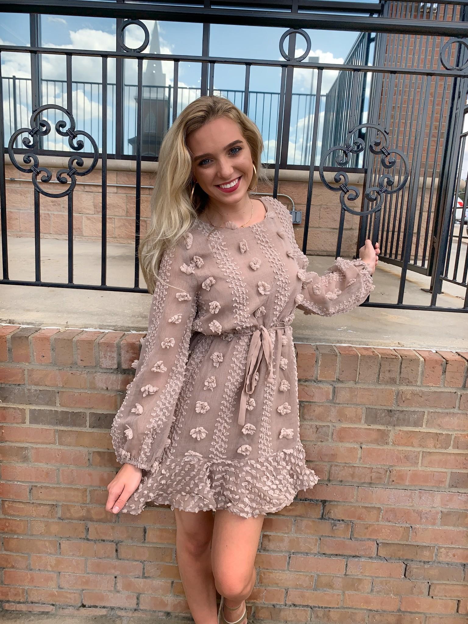 Pom Pom Trim and Lace Dress