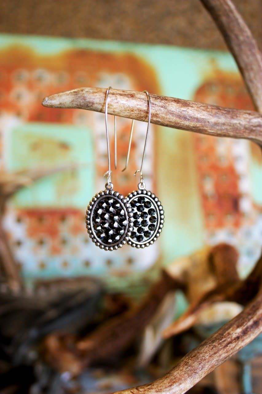 Silver Mini Oval With Crystals on Silver Kidney  Earring