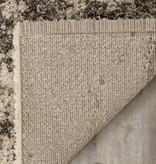 Kalora Lane Cream Brown Distressed Bark Rug 7'10'' x 11'2''