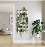 Umbra Floralink Wall Vessel