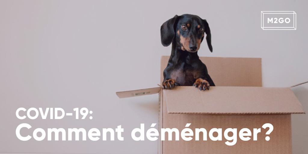 COVID-19 : Comment déménager?