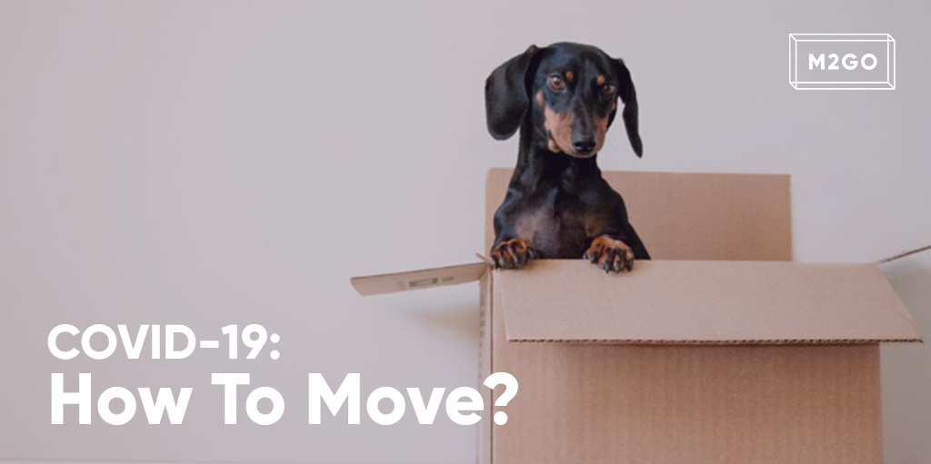 COVID-19 : How to move?