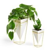 Umbra Trigg Vases, White