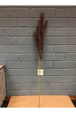 Giant Millet Spray, Burgundy