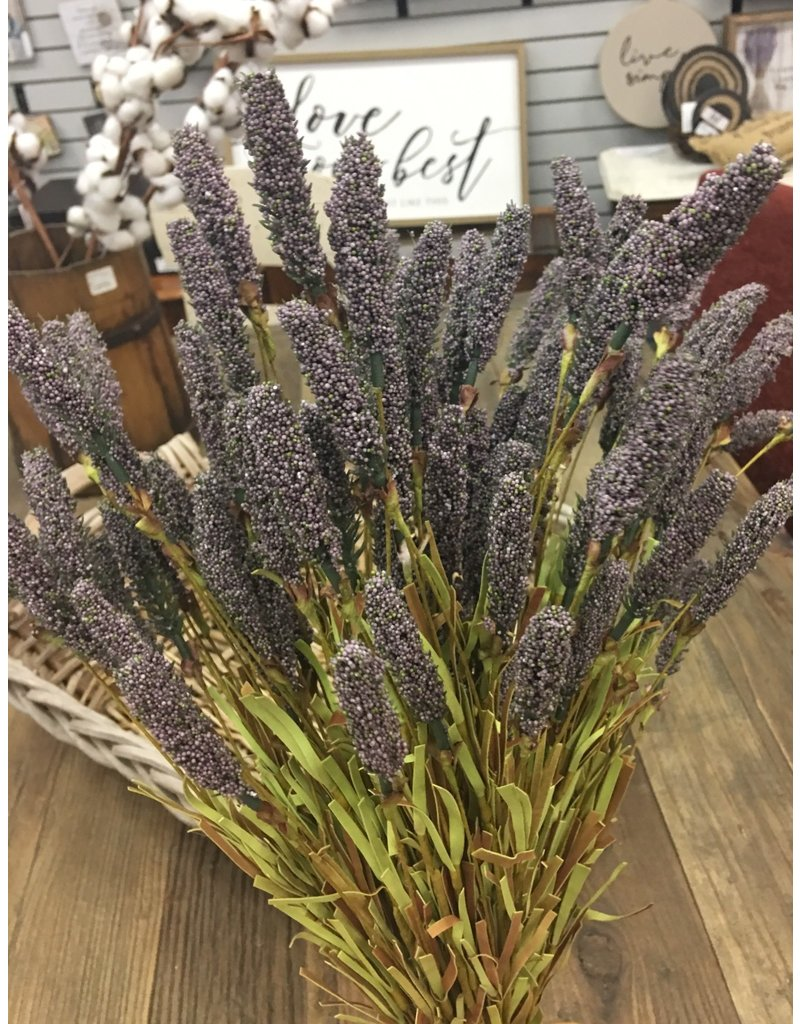 Millet Heather Bush, Purple