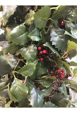 Potted Holly Topiary w Berries