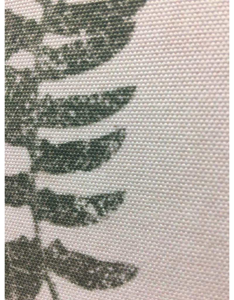 Forest Glen Fern Print
