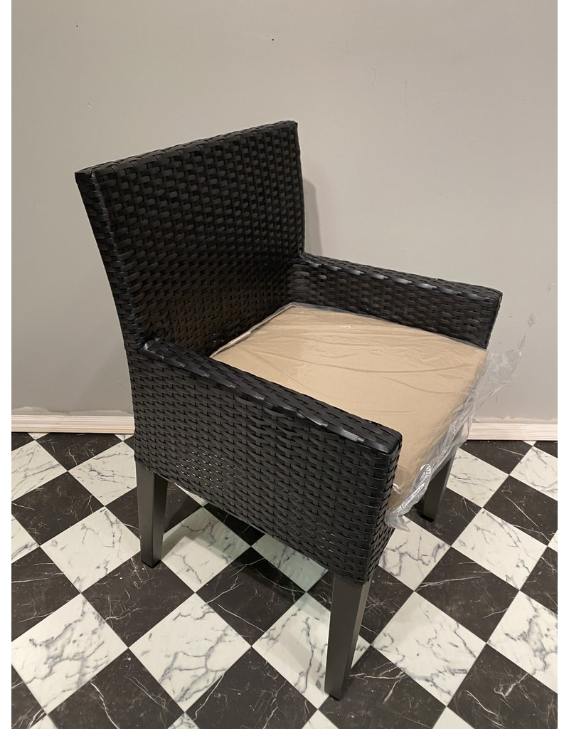 Wicker Dining Chair w/ Cushion