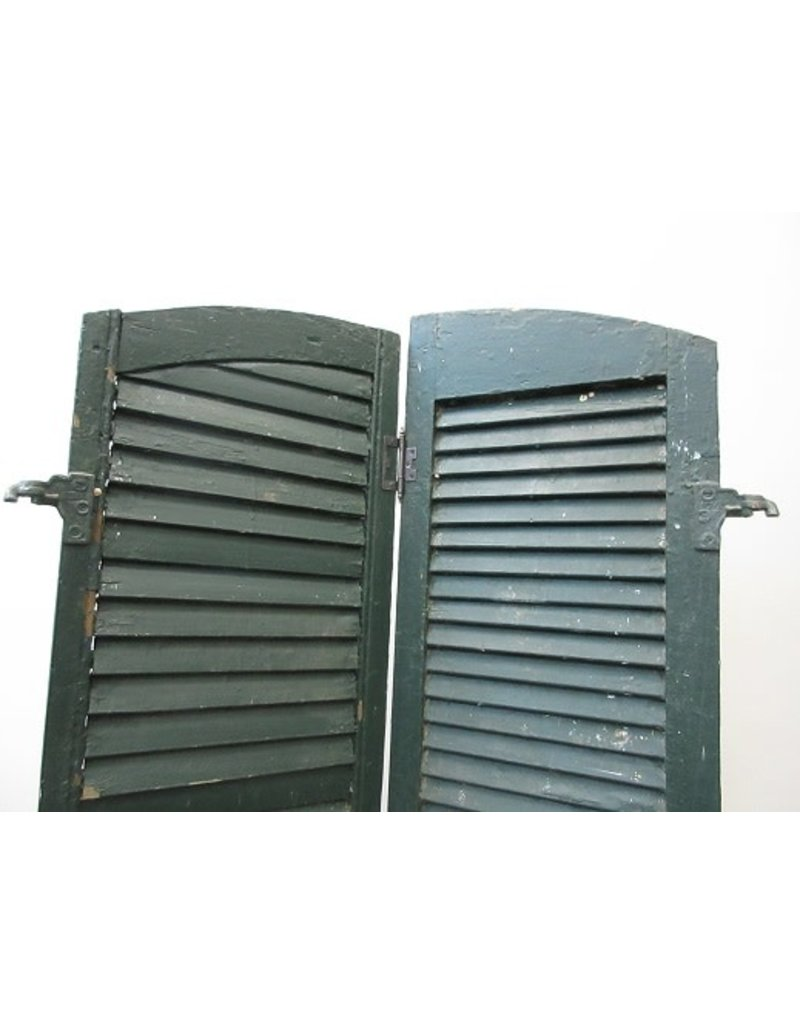Pair of Green Shutters