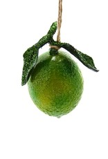Orchard Lime Ornament