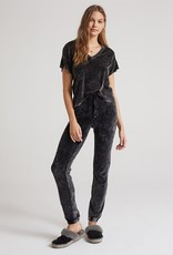 Bella Dahl Relaxed Velour Jogger