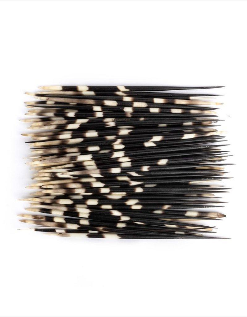 Bundle of 25 Quills