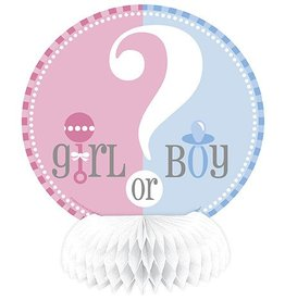 Gender Reveal Honeycomb Decoration