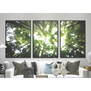 Print on Paper US250 - Triptych  Always Look Up by Alejandro Franseschini