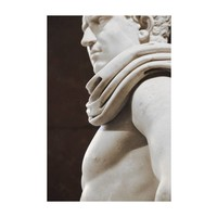 The Picturalist Framed Print on Rag Paper: Gladiator