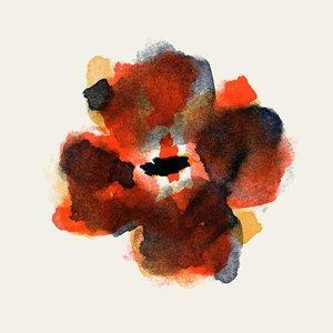 Framed Print on Rag Paper: Anemona