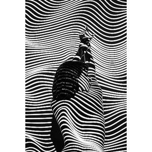 Psychotropic by I. Pereira