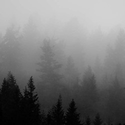 Shop Black & White Photography