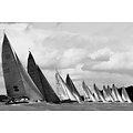 The Picturalist Framed Print on Rag Paper: Swan 45s on the Line