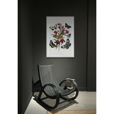 The Picturalist Framed Print on Rag Paper: Flowers with Butterflies Vintage Print