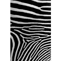 The Picturalist Framed Print on Rag Paper: Natural Pattern