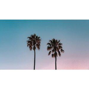 Framed Facemount Acrylic California Sunset