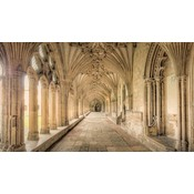 Facemount Acrylic - Winchester Cathedral by M. D. Beckwith Hendry  Facemount Acrylic
