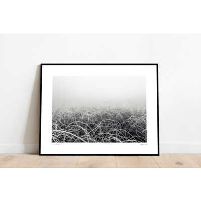 The Picturalist Framed Print on Rag Paper: Seabed by Enric Gener