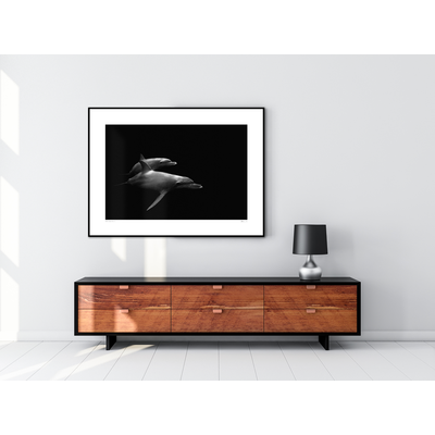 The Picturalist Framed Print on Rag Paper: Delfines by Enric Gener