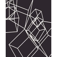 The Picturalist Framed Print on Rag Paper: White Cubes on Black 1