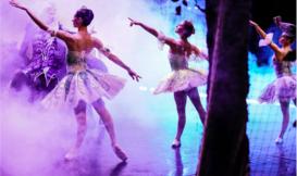 New Ballet Photographer Dimitri Igoshin