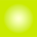 The Picturalist Framed Facemount Acrylic: Chartreuse Halo