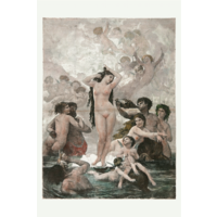 Framed Print on Rag Paper: The Birth of Venus
