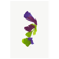 Framed Print on Rag Paper Color Study 18