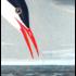 Framed Print on Rag Paper: Artic Tern by John James Audubon