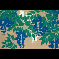 Framed Print on Rag Paper: Wisteria