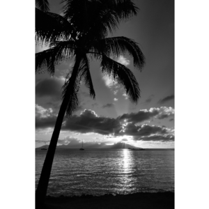 The Picturalist Framed Print on Rag Paper: Sunset in Moorea