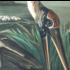 The Picturalist Framed Print on Rag Paper: Wood Ibis by John James Audubon