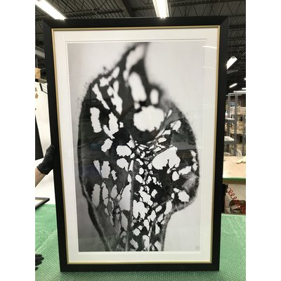 Framed Print on Rag Paper: Feuille Percee 1 Photography Eric Gizard 26