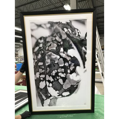 Framed Print on Rag Paper: Feuille Percee 3 by Eric Gizard