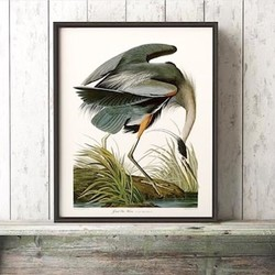 SHOP ART for Country & Lake Houses