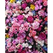 Framed Print on Rag Paper: Floral Burst by A. Batres