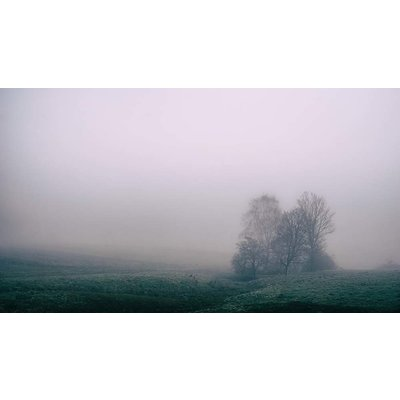 Facemount Acrylic: Misty Plains by N. Durbau