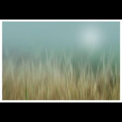 Framed Print on Rag Paper: Bliss by Karen Thom
