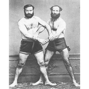 Les Lutteurs-Marseille Frères 1860